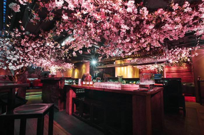 Sakura Season at ROKA