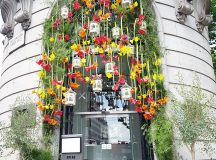 A little bit of therhs Chelsea Flower Show in Coventhellip
